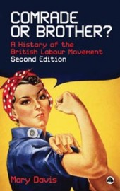 Comrade or Brother: A History of the British Labour Movement