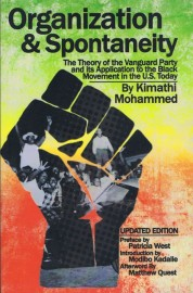 Organization & Spontaneity: The Theory of the Vanguard Party and its Application to the Black Movement in the U.S. Today