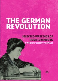 The German Revolution: Selected Writings of Rosa Luxemburg