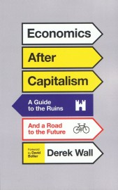 Economics After Capitalism: A Guide to the Ruins and a Road to the Future