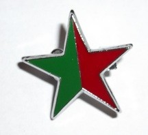 Green Socialist Red & Green star badge