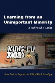 Learning from and Unimportant Minority: Race Politics Beyond the White/Black Paradigm